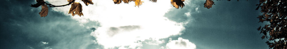 Photo in Random #white #winter #blue #clouds #sky #cañón #leaves #gold #eos #7d #usm