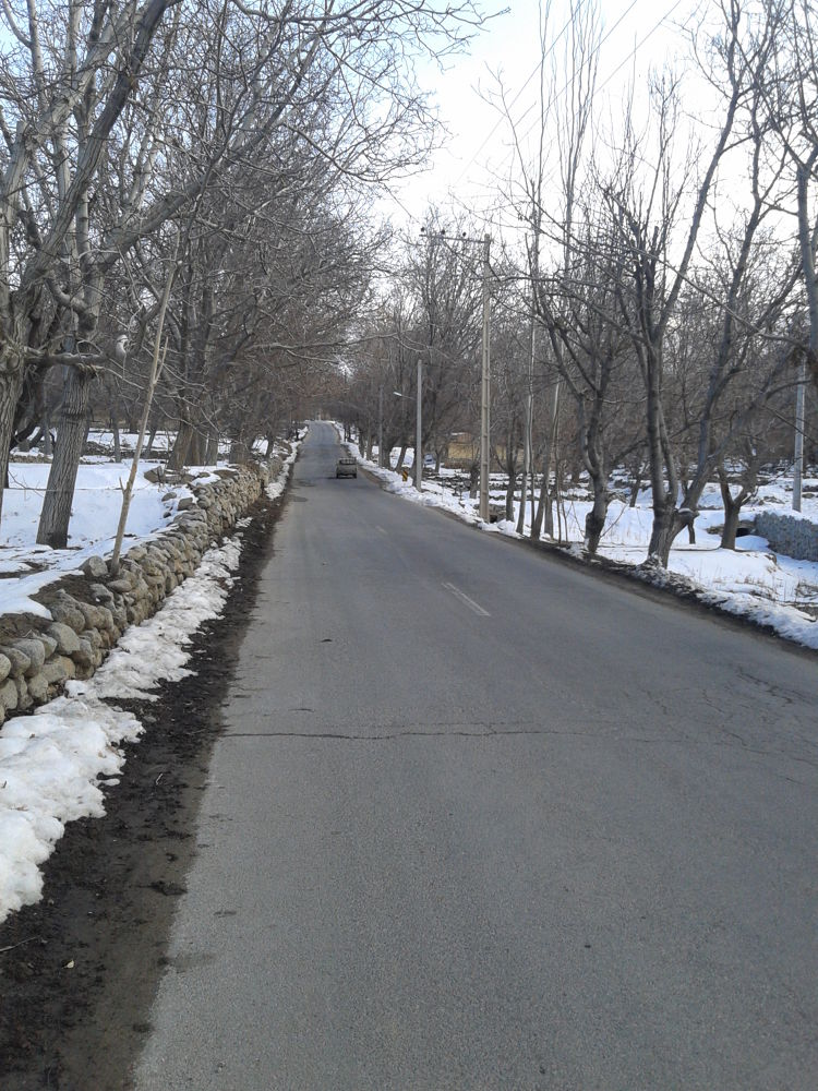Photo in Nature #winter #road #nature