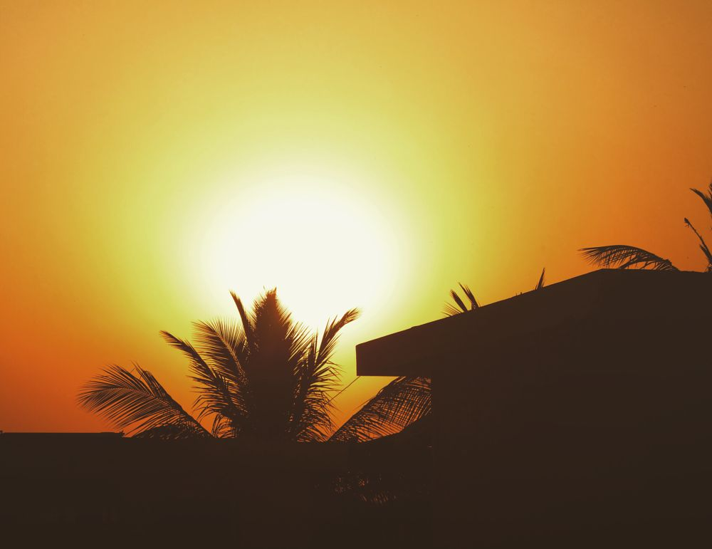 Photo in Nature #sunset #sun #nature #goldenhour #outdoor