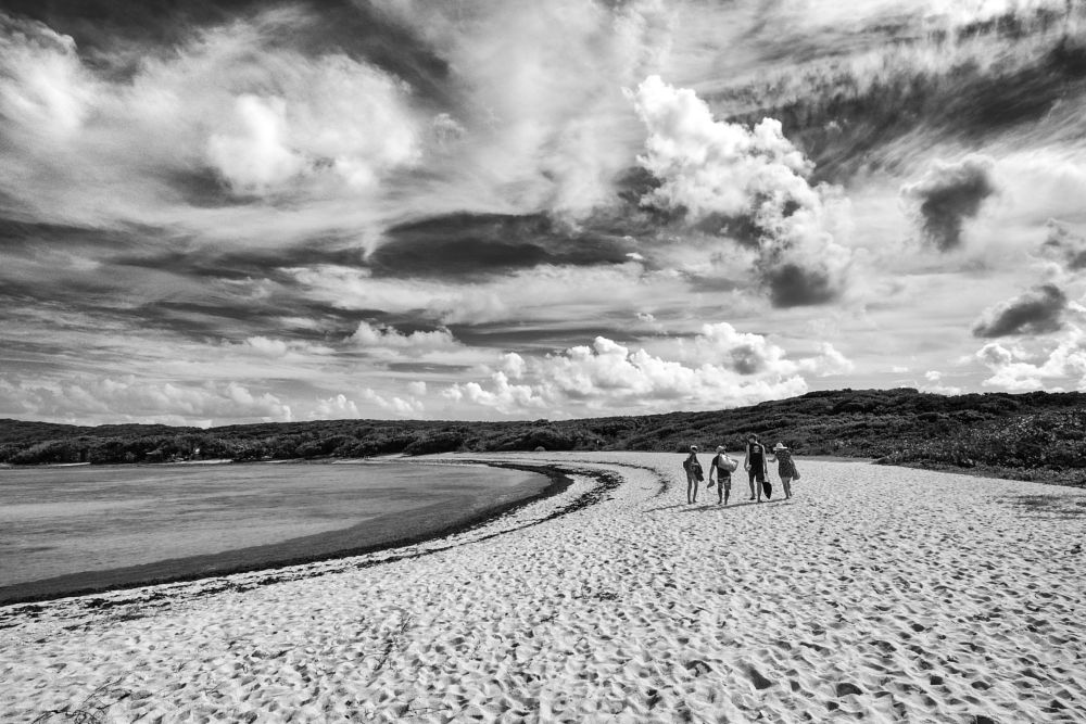Photo in Black and White #plage #nuages #grande-anse-des-salines #salines #guadeloupe