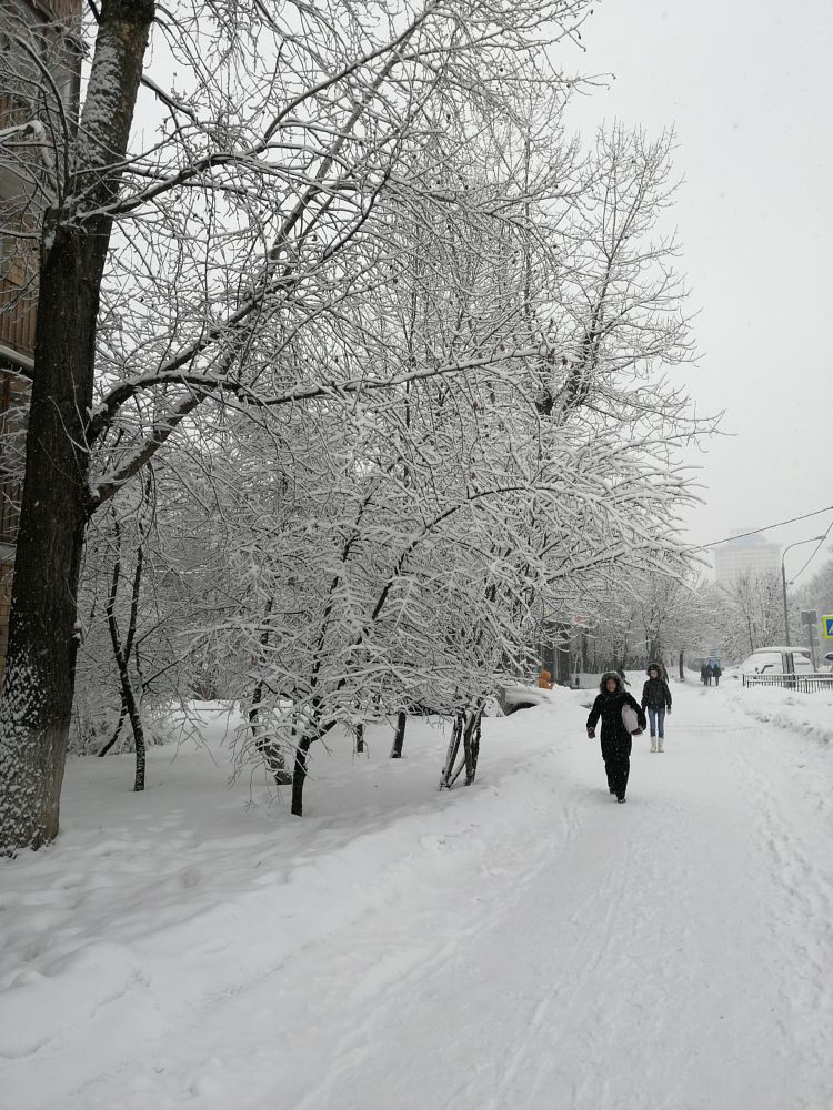 Photo in Urban #winter #snow #ice #city #town #moscow