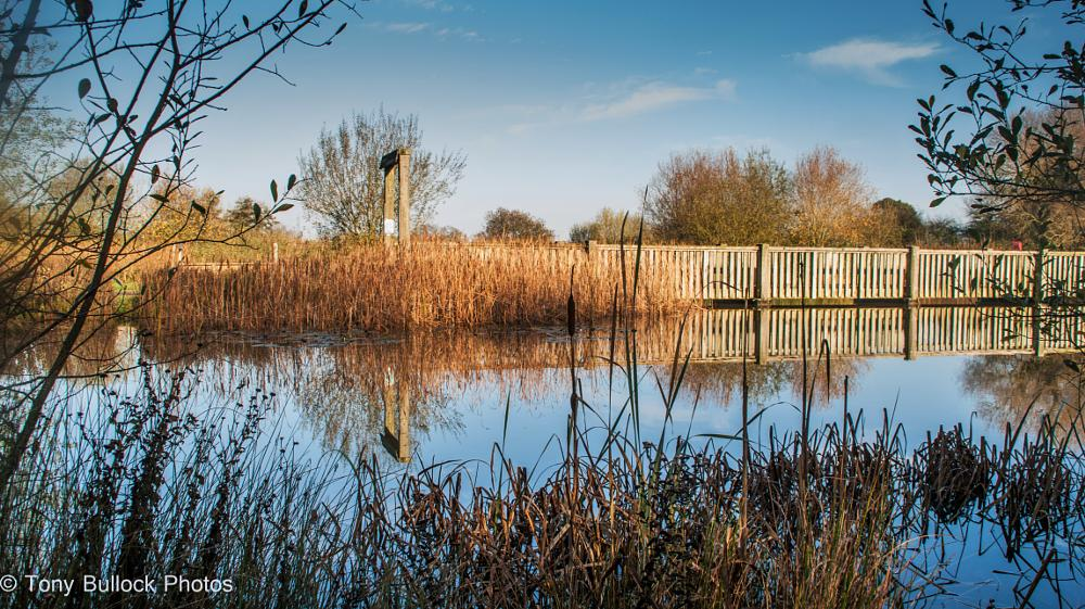 Photo in Landscape #bridge #lake