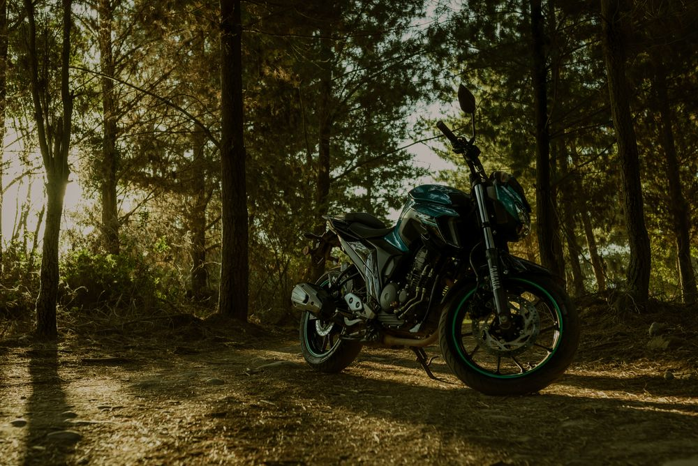 Photo in Random #moto #yamaha #chile #road #field #nature #pics #precordillera
