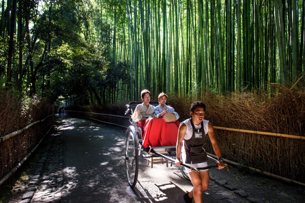 Photo in People #bamboo trees #people #couple #trees #japan #kyoto #rickshaw