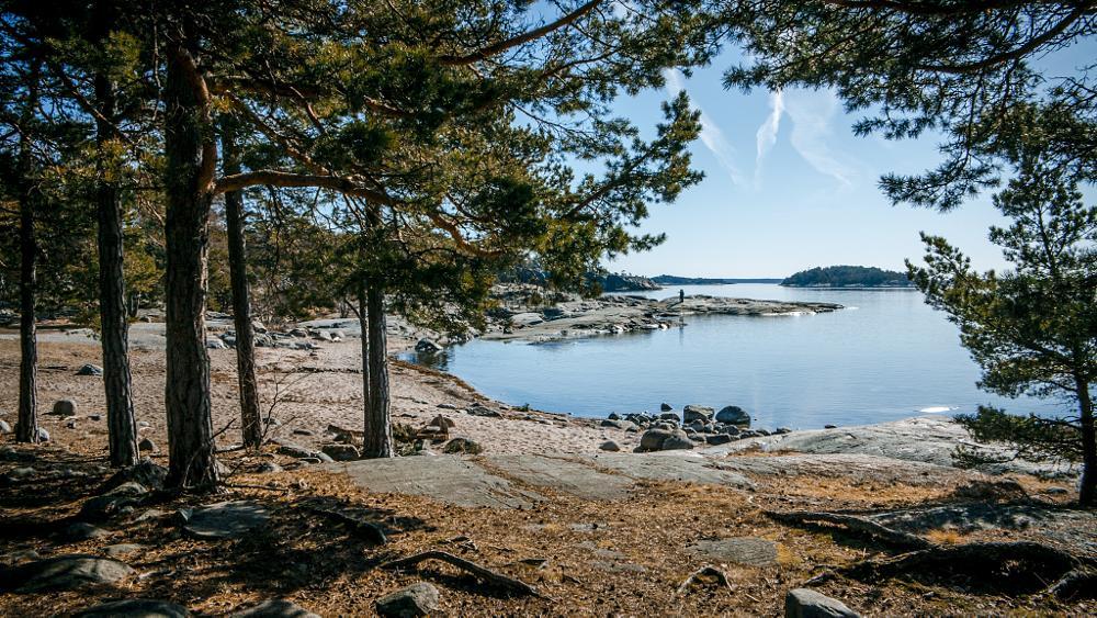 Photo in Landscape #sweden #coast #trees #water #stones #coastline #blue #sky #fjeril #stockholm