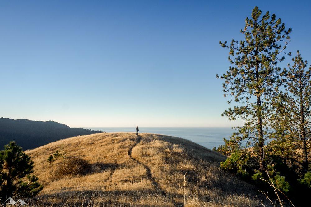 Photo in Travel #explore #adventure #discover #hike #hiking #travel #trip #road trip #roadtrip #highway1 #hwy1 #usa #cali #california #olympusinspired #olympudomd #omd #chriseyrewalker #people #sun #sunrise #sunset #alone #olympus