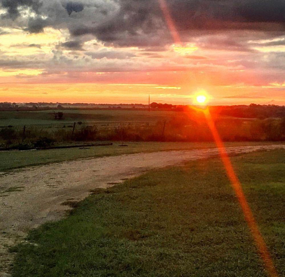 Photo in Rural #rural #farm #land #sunset #light
