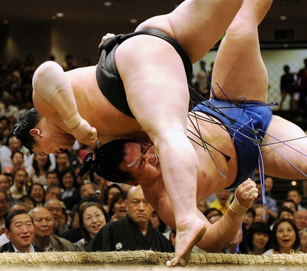 Photo in Random #sumo