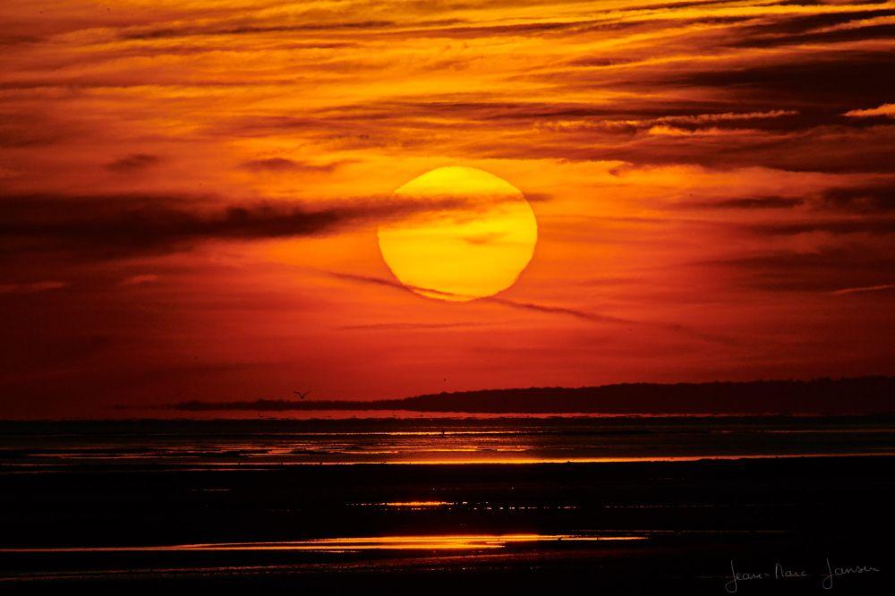 Photo in Landscape #landsacpe #sunrise #beach #normandy