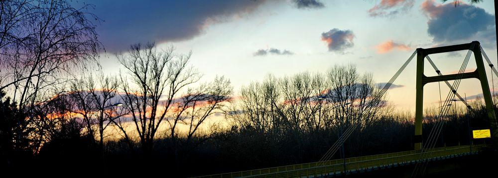 Photo in Random #bridge #sky #tree #color #night #nightfall