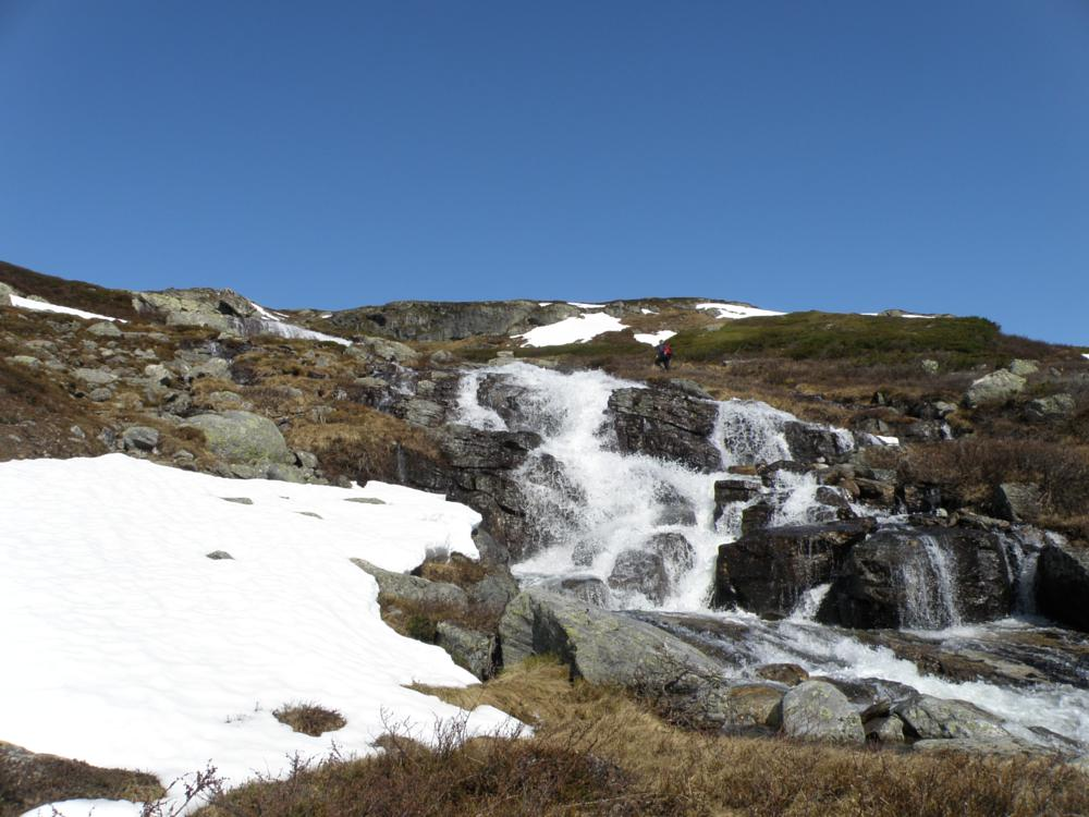 Photo in Nature #mjolge #buskerud #waterfall