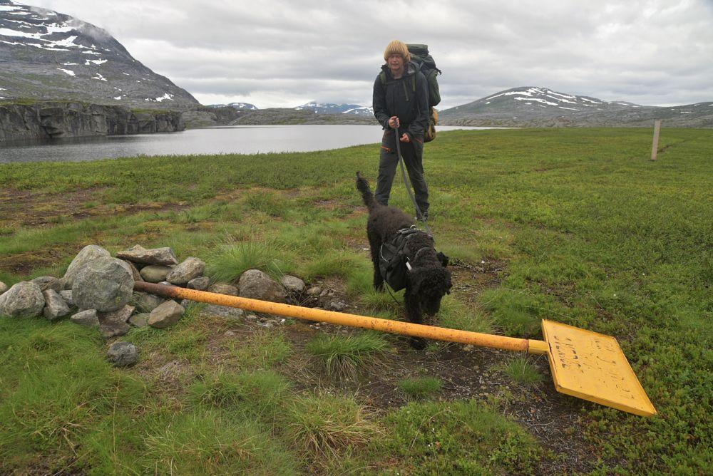Photo in Nature #frøya #nordland #sweden #norway end to end