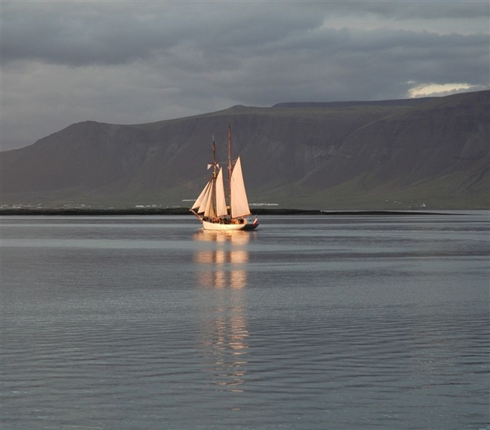 Photo in Random #reykjavik