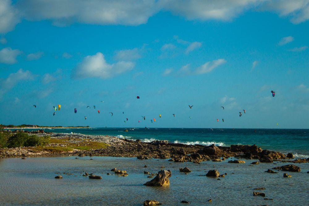 Photo in Random #kiting #kite surfers #ocean #colors #wind