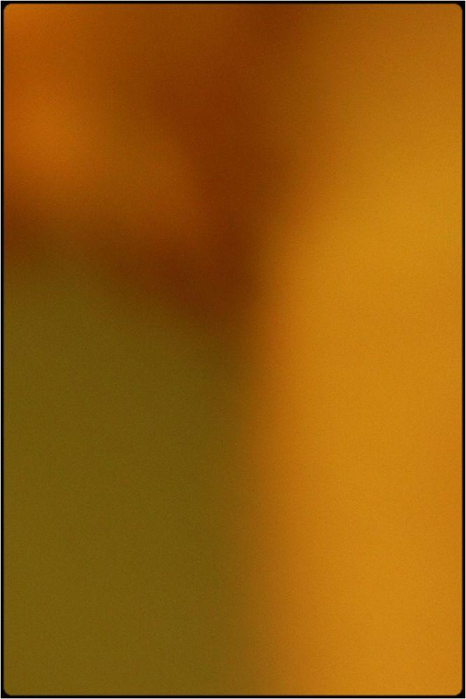 Photo in Nude #body #bodscape #female #closeup #abstract