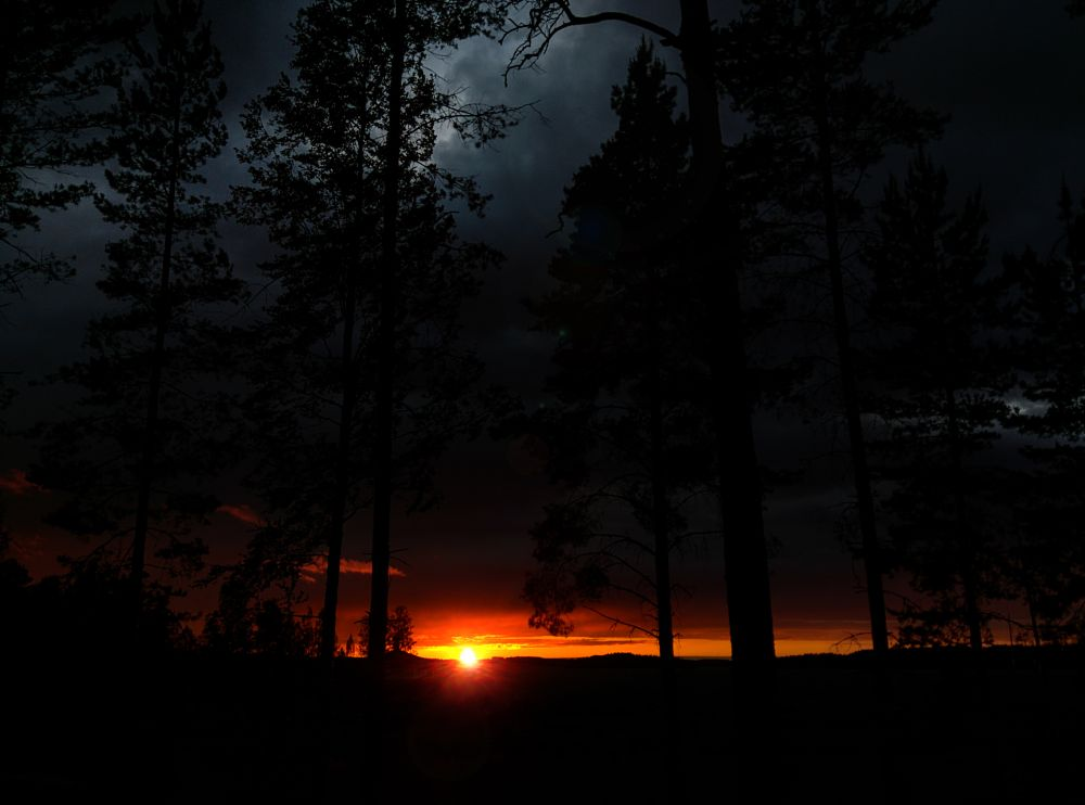 Photo in Nature #sunset #sun #sky #storm #clouds #forest #trees #finland #redsky