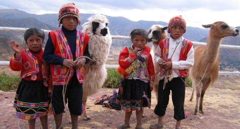 Photo in Animal #animals #alpacas #wildlife #nature love