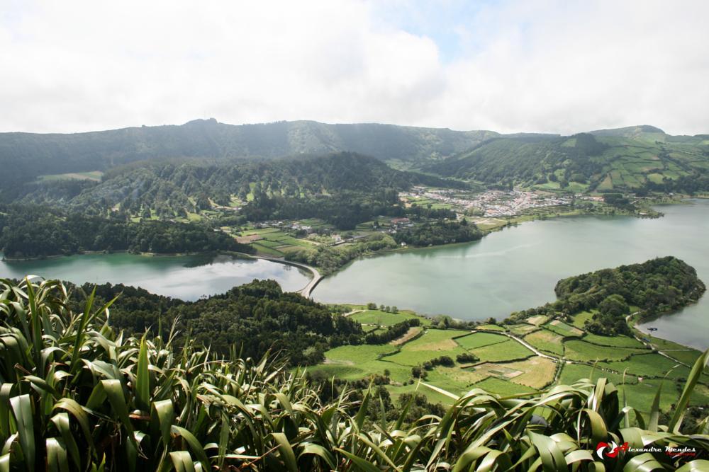 Photo in Nature #açores #natureza #viagem