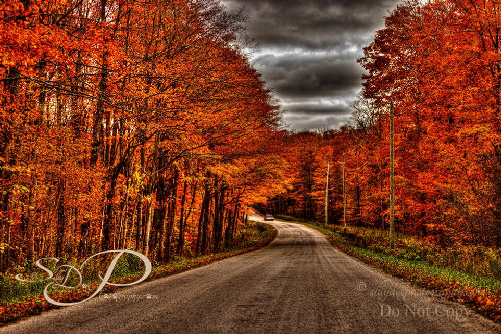 Photo in Landscape #hdr winding country rd autumn