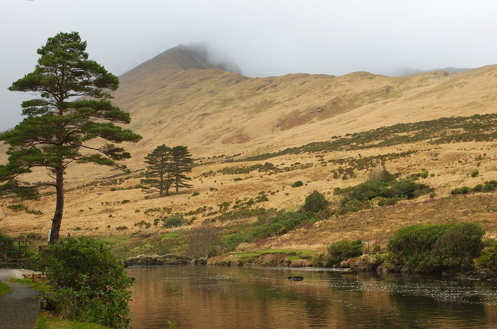 Photo in Landscape #river #tree #mountain #ireland #landscape #clouds
