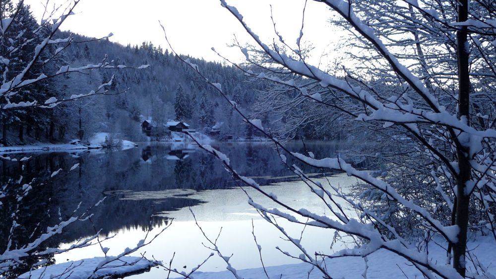 Photo in Nature #winter #landscape #norway