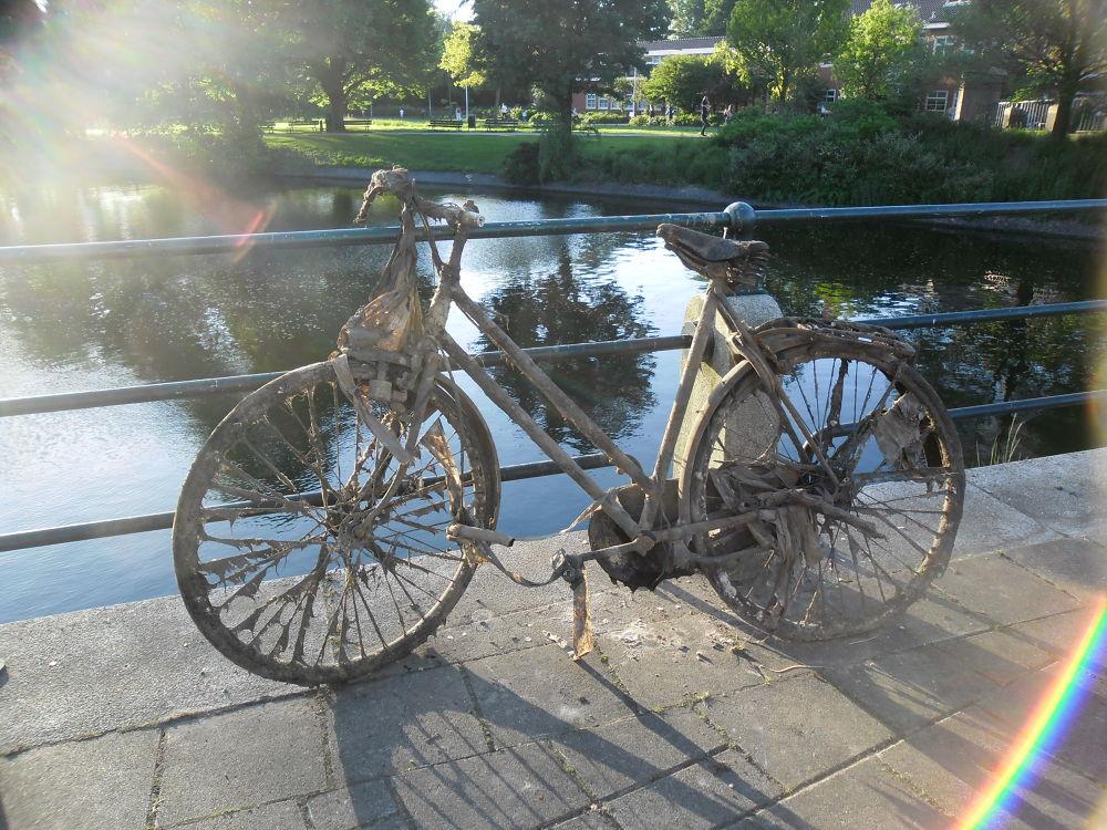 Photo in Still Life #bike #mud #amsterdam #channel #sun