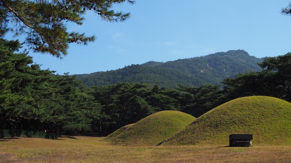 Photo in Cityscape #the city of the royal tombs #october #landscape of gyeongju #gyeongju #landscape