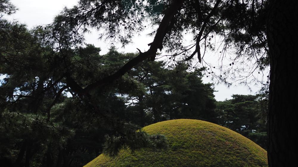 Photo in Random #the city of the royal tombs #october #landscape of gyeongju #gyeongju #landscape
