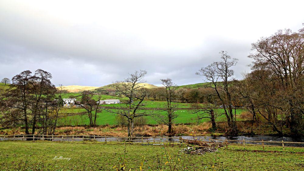 Photo in Random #river #trees #landscape