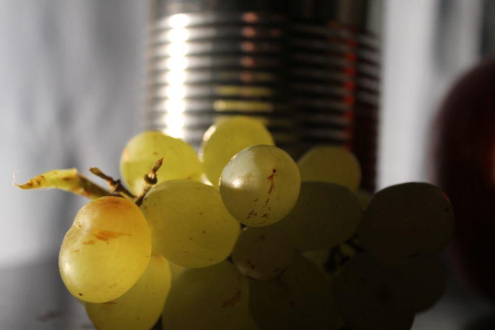 Photo in Still Life #food #grapes #stilll life