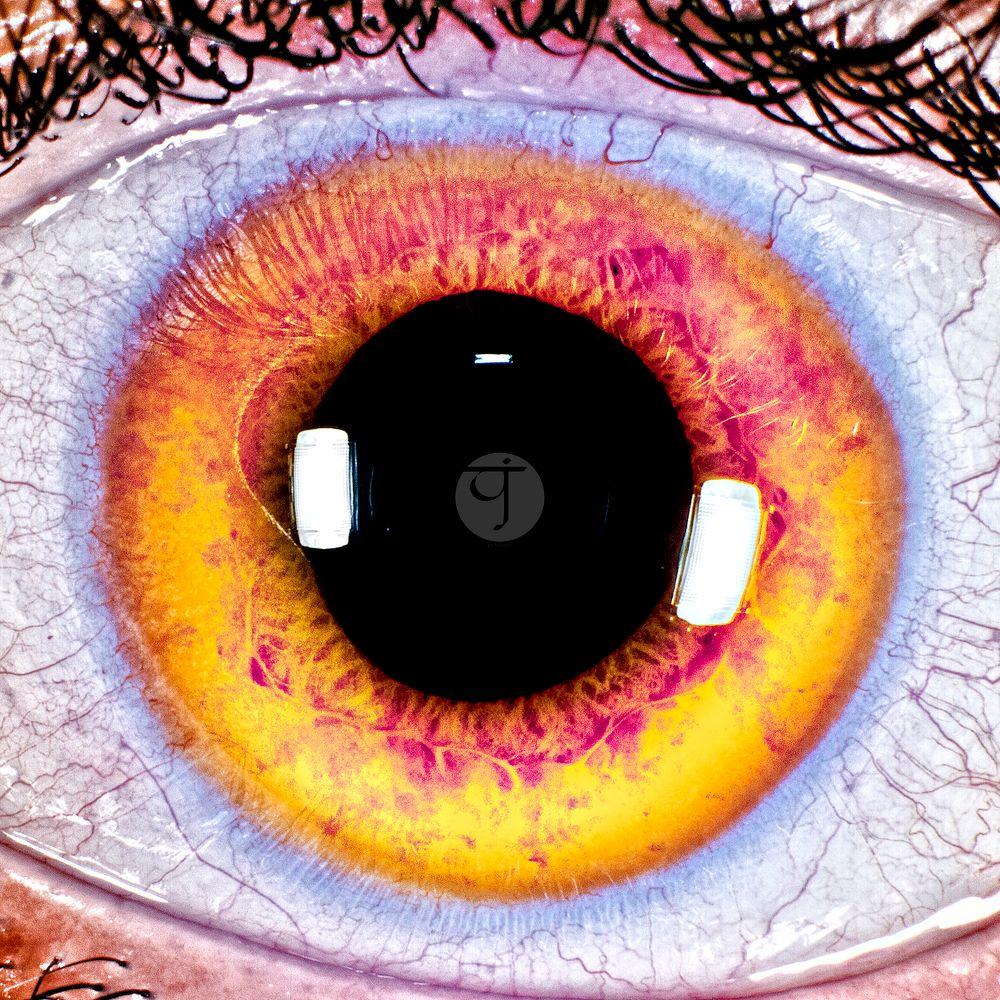 Photo in Macro #eye #eyeball #iris #pantone #pantone 2021 #pantone2021 #13-0647 #f5df4d #color #coloring #colors #yellow #illuminating #pupil #details