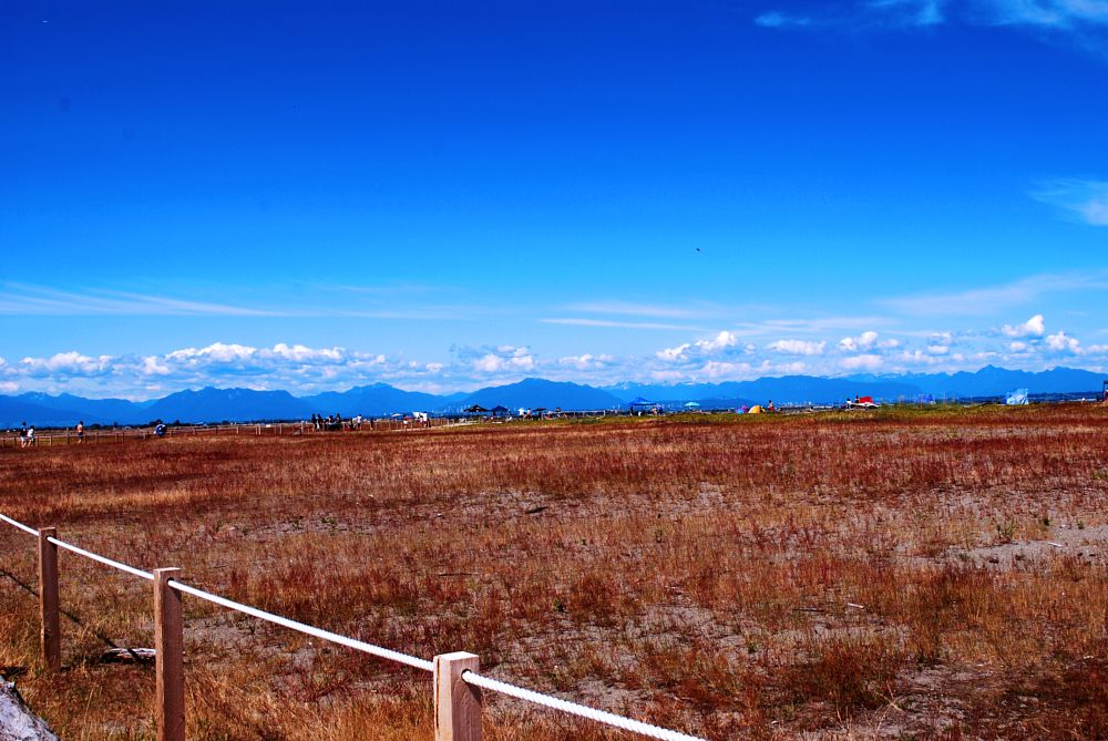 Photo in Nature #summer #hot #clouds #sky #blue #red #orange #outdoors #colors #photo #nikon #color #outdoor #grass #mountains #hiking #beautiful #white #yellow #landscape #nature #canada #beauty