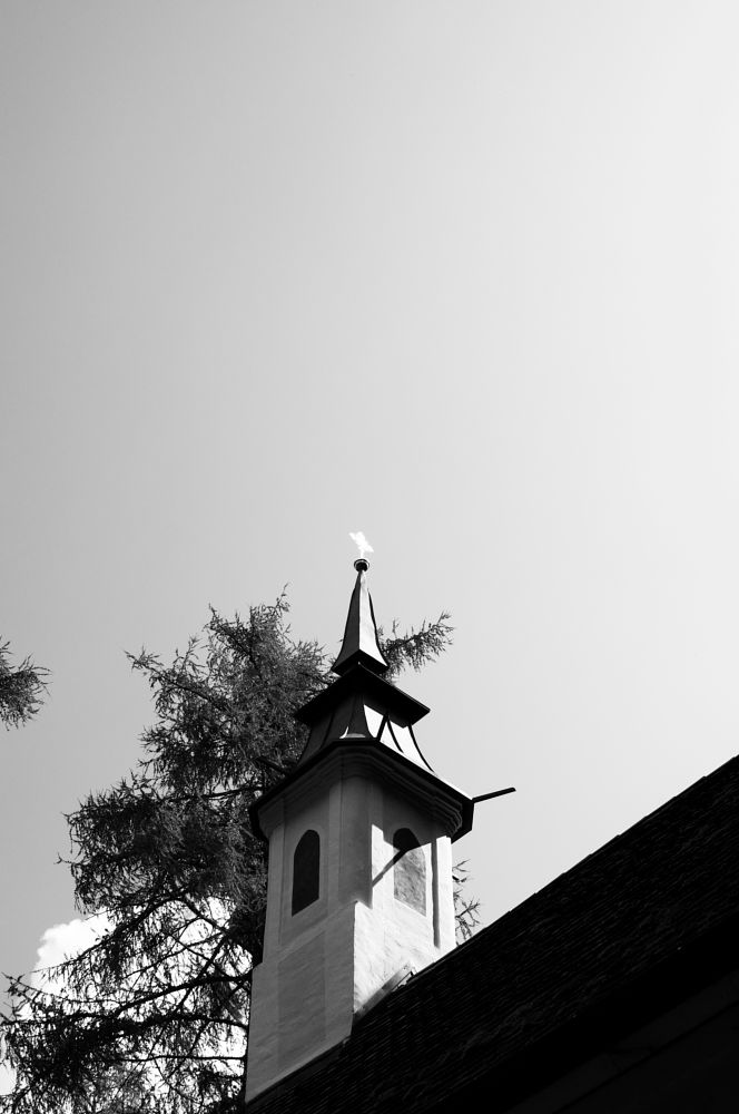 Photo in Architecture #bw #black and white #architecture #morning walk #behind the forest