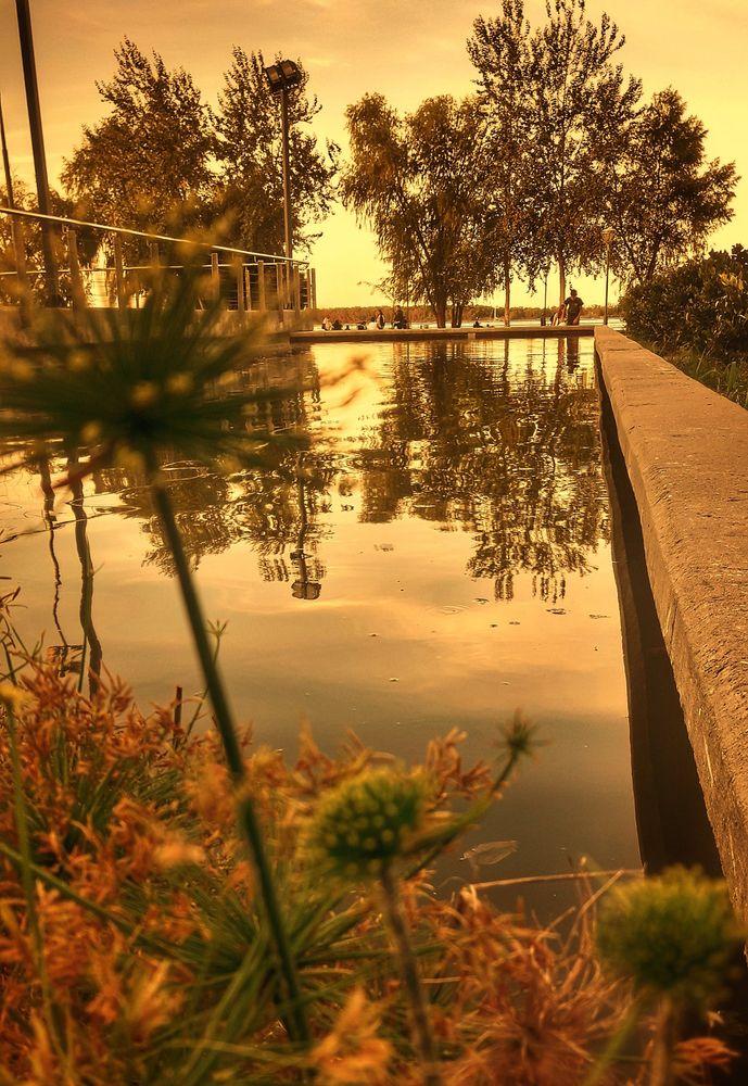 Photo in Random #photo #landscape #pic #colours #orange