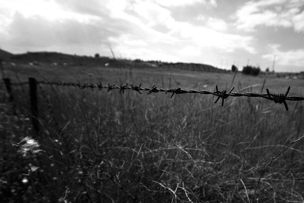 Photo in Black and White #barbed wire #landspace #concaptual #prevents
