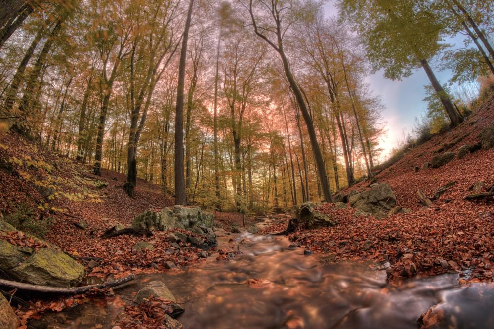 Photo in Landscape #hdr
