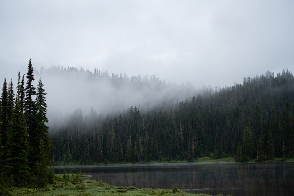 Photo in Travel #hiking #travel #sunrise #reflection lake #mt rainier