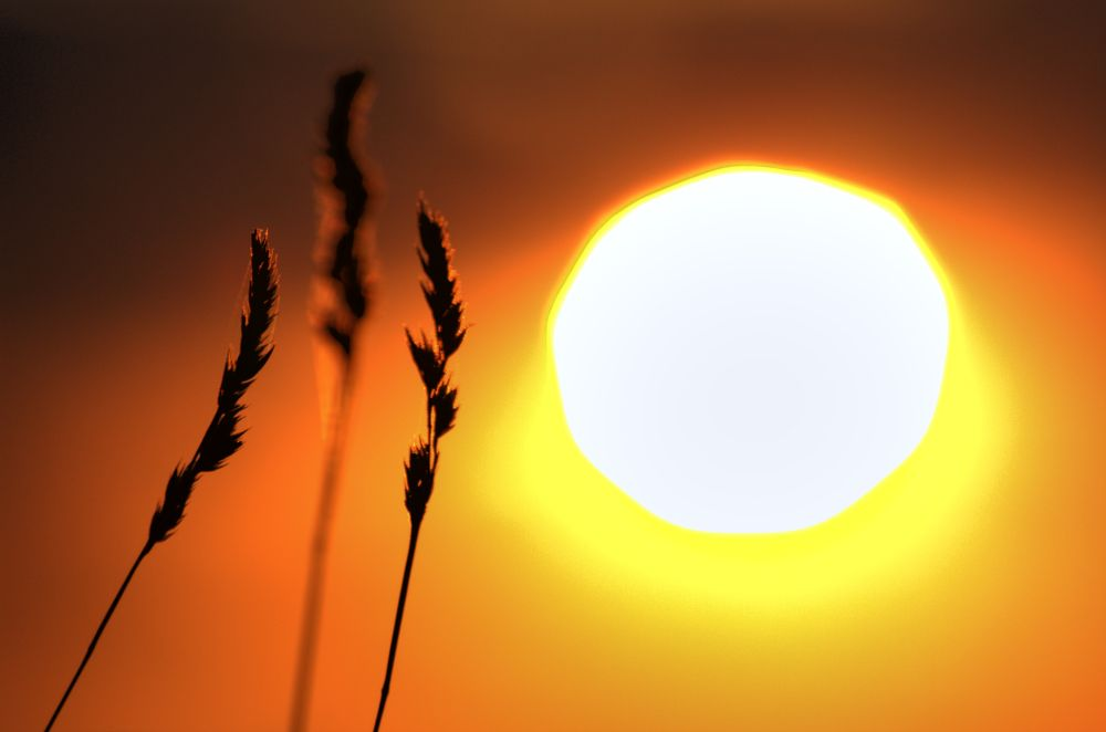 Photo in HDRI #evening #landscape #england #sun #reading #berkshire