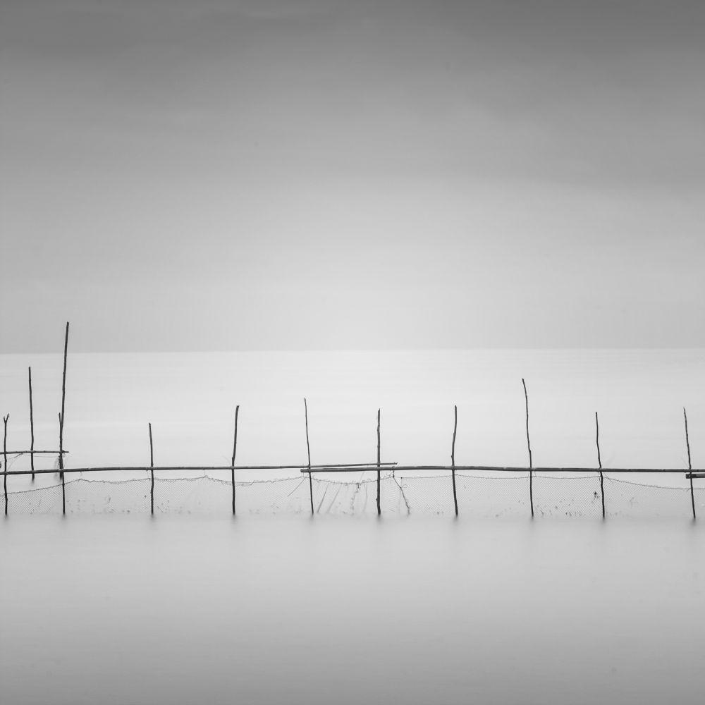 Photo in Black and White #landscape #nature #black and white #minimalism #fine art
