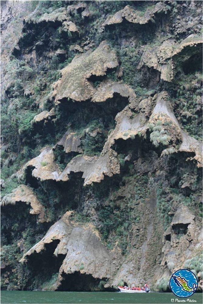 Photo in Travel #cañón del sumidero #chiapas #cascadas #waterfalls #mexico #árbol de navdad #christmas tree