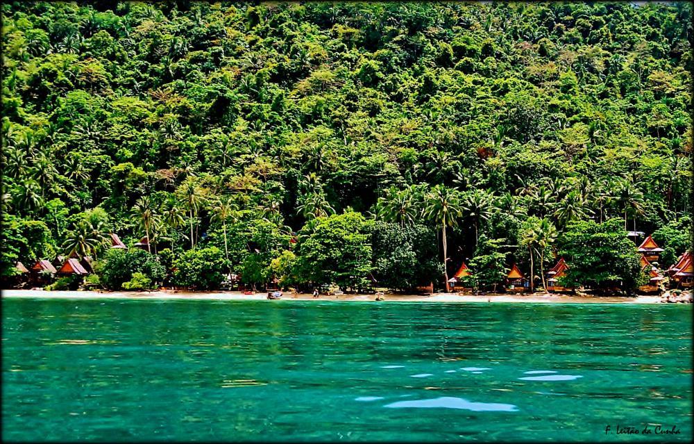 Photo in Landscape #phi phi island relax resort #koh phi phi #thailand
