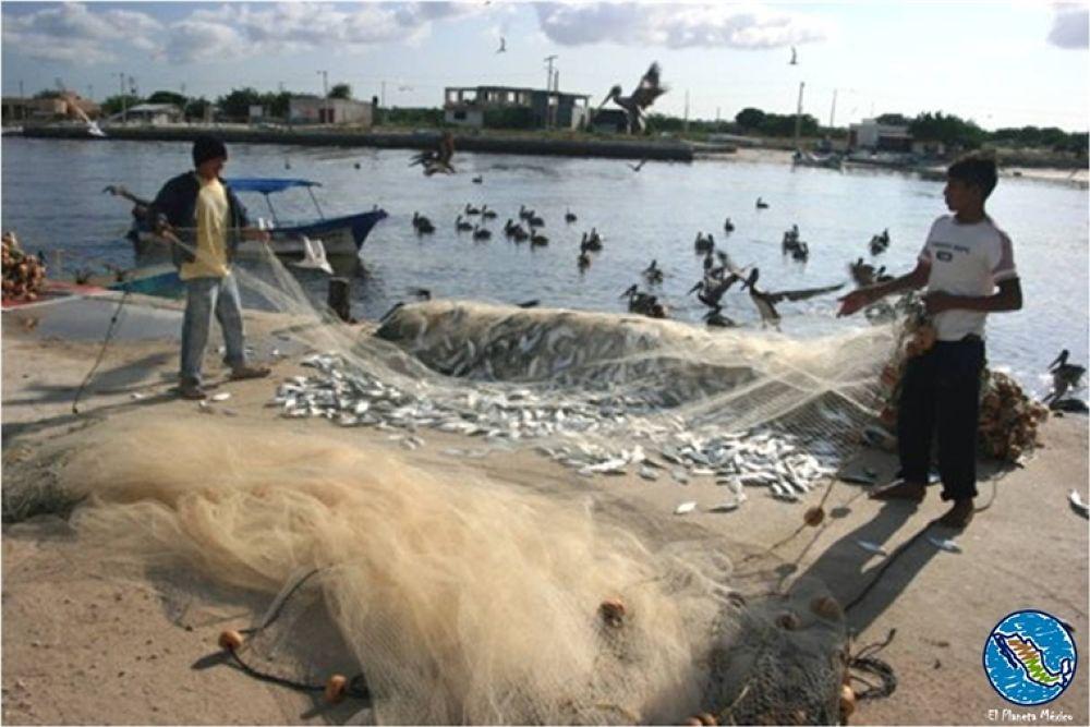 Photo in Travel #celestun #yucatan #mexico #fishermen