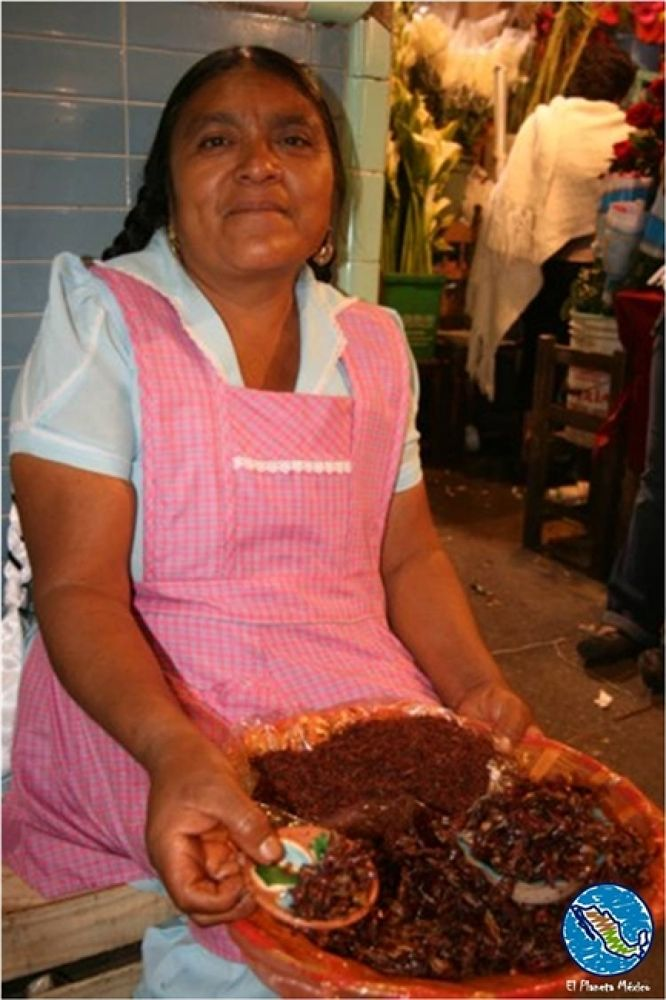 Photo in Travel #market. #grasshoppers. #chapulines #oaxaca #mexico #gastronomy
