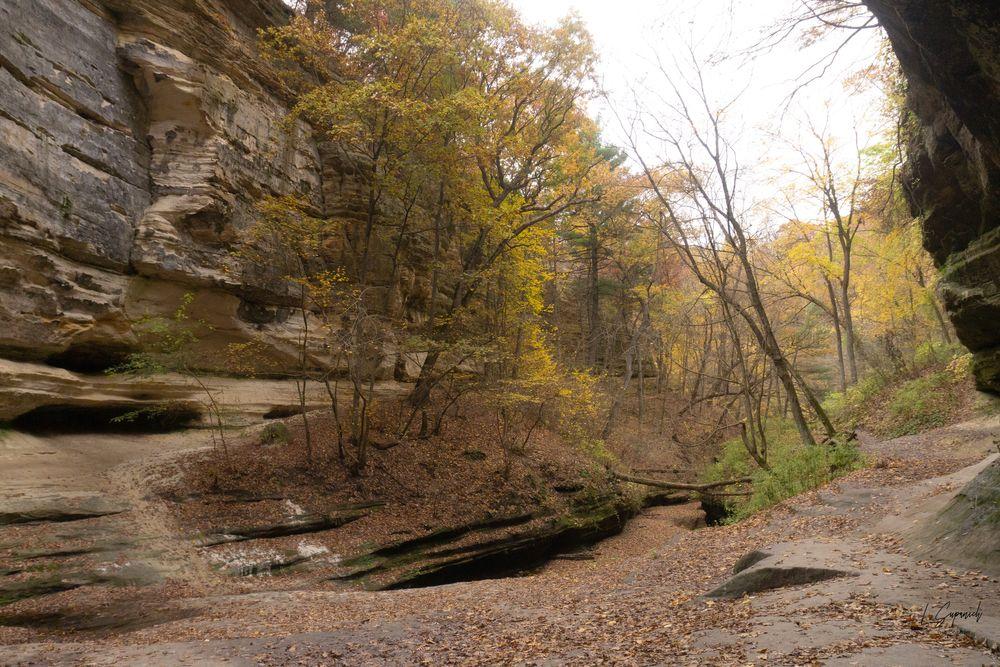Photo in Landscape #canyon #fall #autumn #fall colors #autumn colors #nature #landscape #leaves #trees
