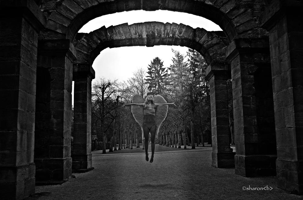 Photo in Black and White #angel #heaven #wings #back to heaven #back #fly #black and white #creative composition #composition #photography