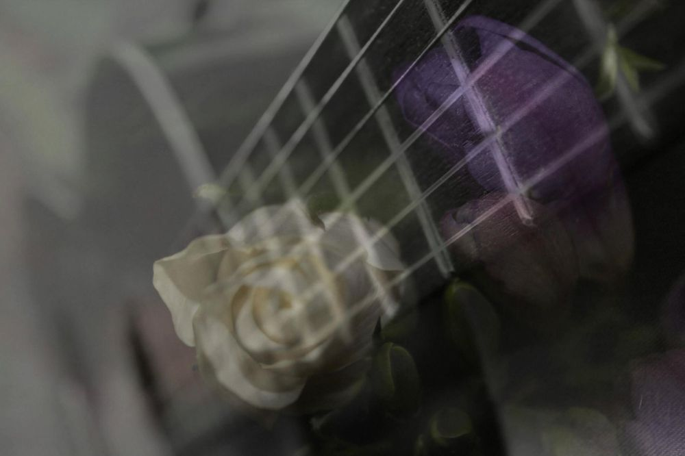 Photo in Abstract #music #double exposure #flowers #roses #guitar #acoustic #black and white #photoshop #still life #macro #colour