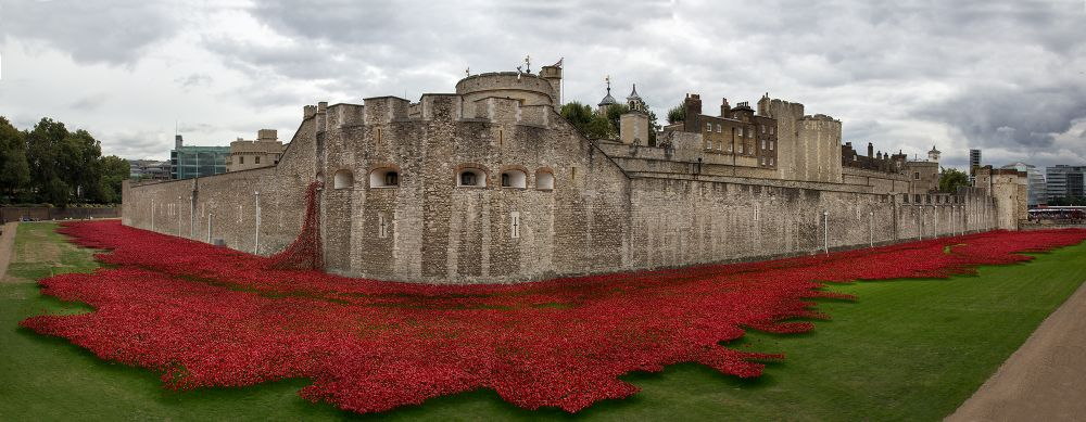 Photo in Architecture #london #tower of london #poppies #tower poppies #ww1