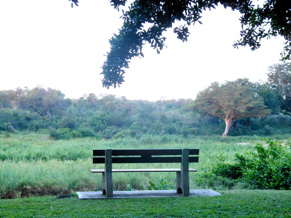 Photo in Landscape #bench #viewpoint #inspirational places #kruger park #skukuza camp #bushveld #carolinestreet #nature #flora #sabie river