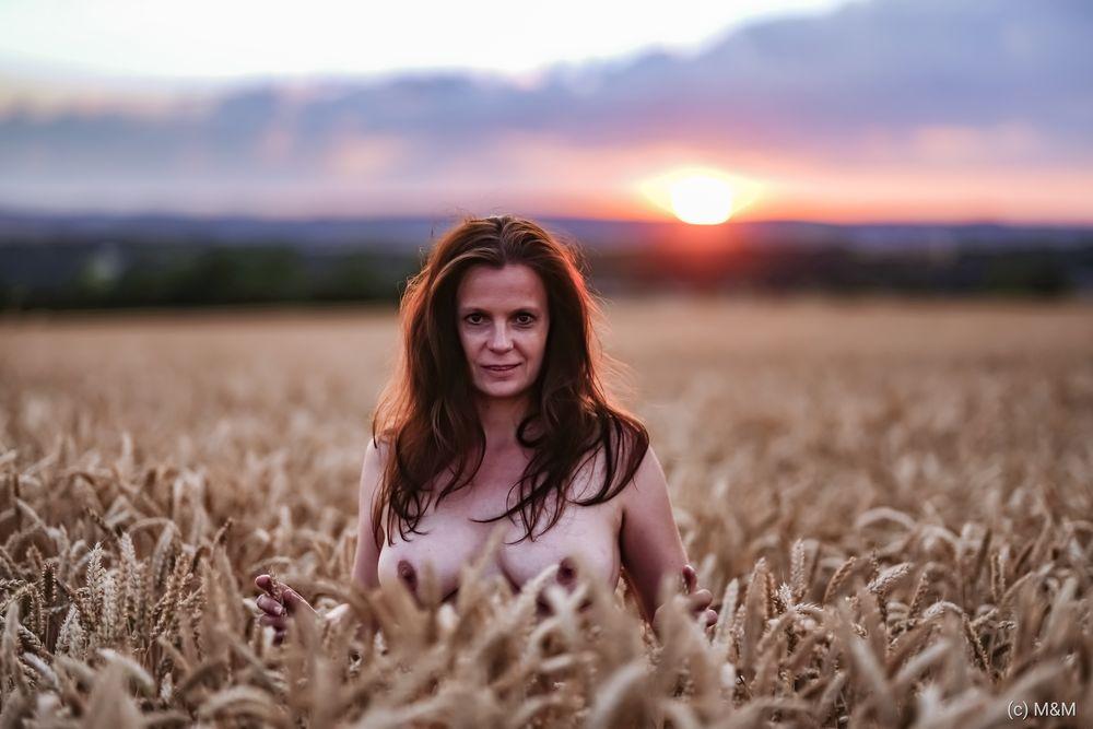 Photo in Random #naked #breasts #nipples #wheat #sunset #romantic #hobbymodel #sexy #sex #erotic