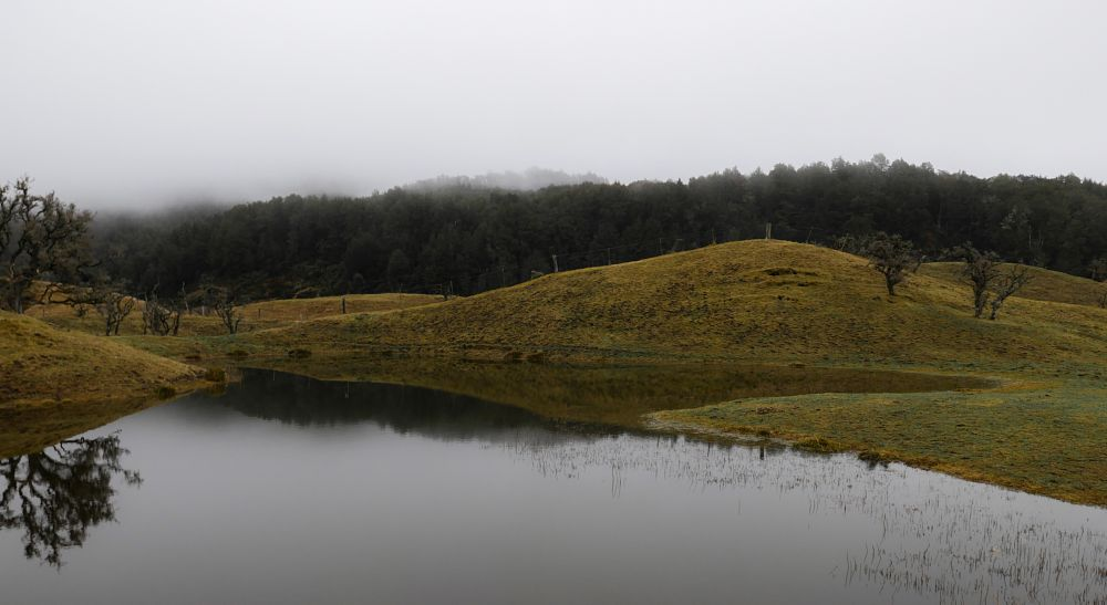Photo in Landscape #glenorchy #queenstown #new zealand #nature #mist #landscape